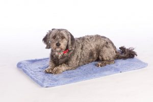 jetpets stay dry fleece mat