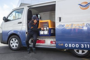 pet transport new zealand