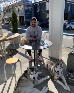 prefab dog friendly cafe wellington
